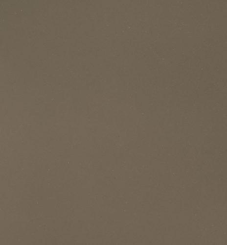 Rhino Fossil Brown Quartz