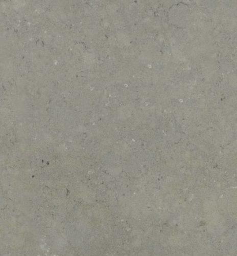 Rhino Fossil Grey Quartz
